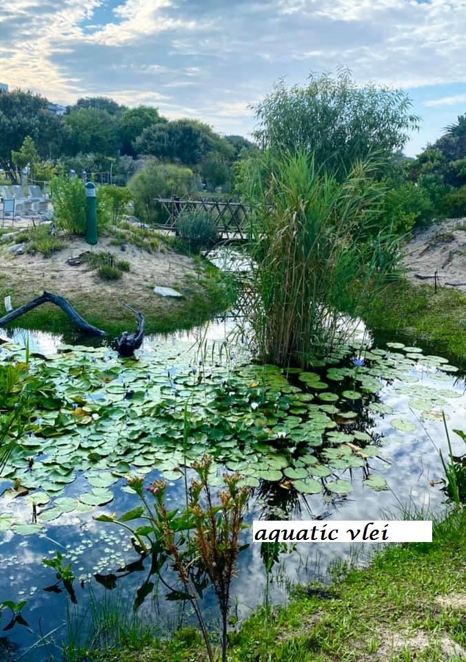 Stilbaai – Tuin op die Brak